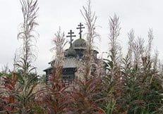 Добровольцы «Общего дела» провели работы по восстановлению более 30 храмов Русского Севера