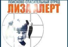 Волонтеры поисковой организации «Лиза Алерт» не согласны с обвинениями депутата Ольги Епифановой
