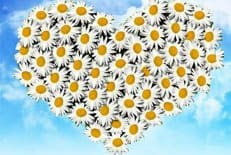 В День семьи, любви и верности в Москве пройдет около 120 праздничных мероприятий