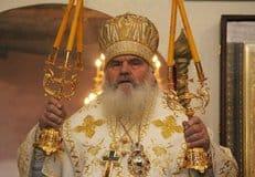 Митрополит Владивостокский Вениамин учредил премию за противодействие абортам